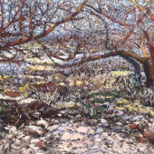SABINO CANYON AUTUMN VARIATION 1 2014 mixed media on paper 20 3 4 in. x 28 in WEB