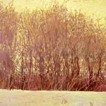 Warner Spring Willows WEB
